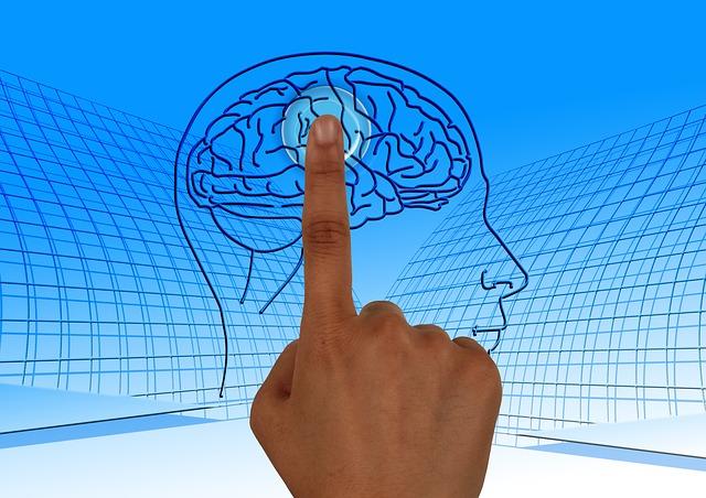 memoria cerebro